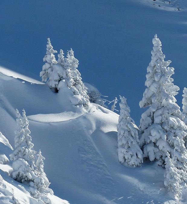 inverno-soal